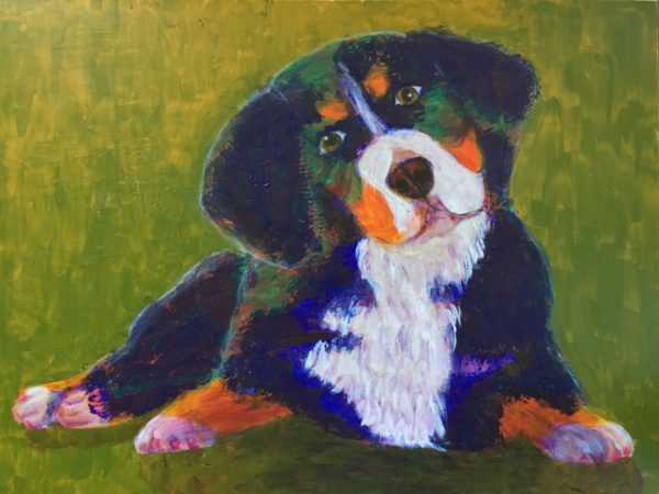 Head cocked and waiting, a Bernese Mountain Dog puppy lies on golden green grass. Blue, Orange, Teal, Green, White. Large Painting by artist Donald Ryker in textured expressionist impressionist art style with unique impasto glaze technique.