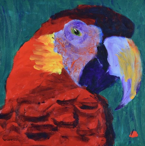 A red and purple tropical parrot looking back over his shoulder with sun highlights and teal background. Jungle. Tropical. Red, Purple, Yellow, Teal. Large Painting by artist Donald Ryker in textured expressionist impressionist art style with unique impasto glaze technique.